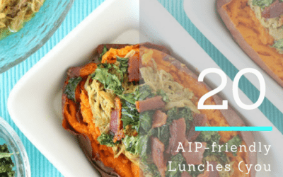 25 Easy AIP Lunch Ideas (Brown-bag Approved)