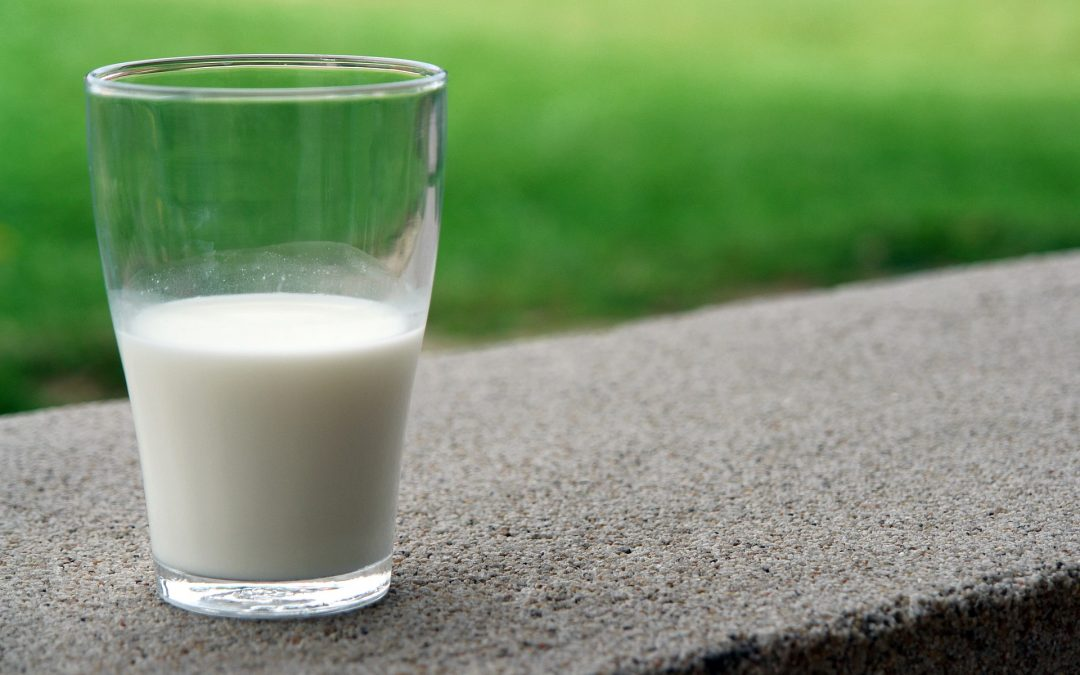 Overcoming Lactose Intolerance: How to Reintroduce (Grass-Fed) Dairy