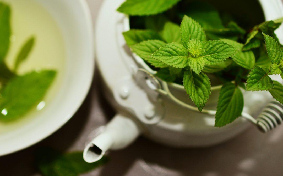 Top 8 Natural Remedies for UTIs-No Antibiotics Included