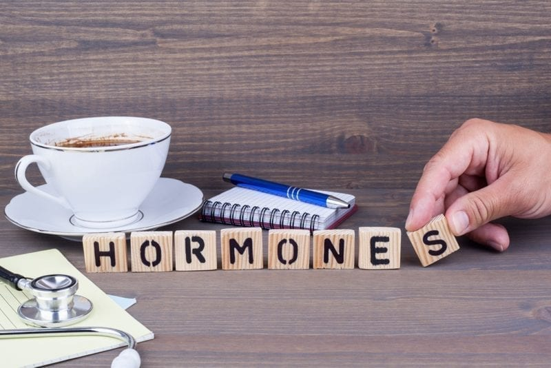 hormones hormone-gut connection